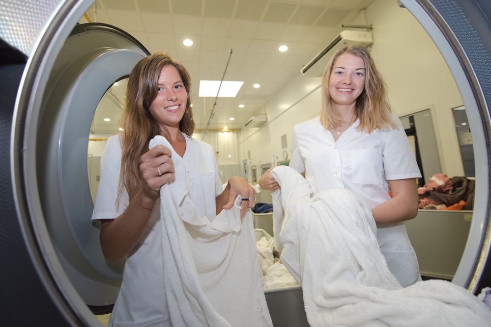 Your Essential Guide to Choosing a Linen Services Company