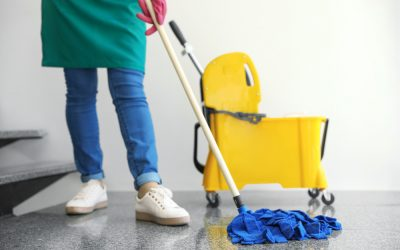 What's the Difference Between Wet, Dust, and Microfiber Mops?